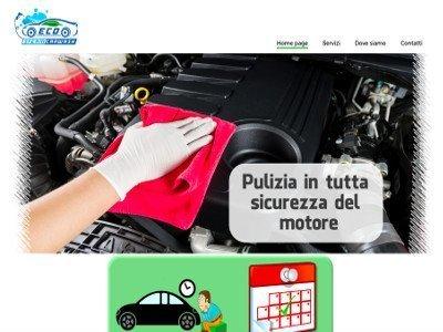 eco steam car wash